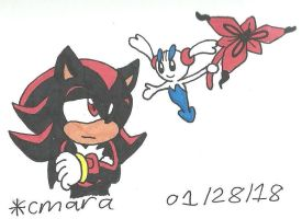 Shadow and Floette