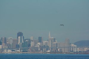 San Francisco as seen from Alameda by Dr-J-Zoidberg