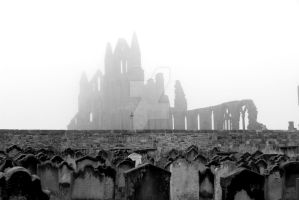GHOST IN THE FOG by mildahe