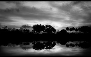love nature001 black and white by Bartas1503