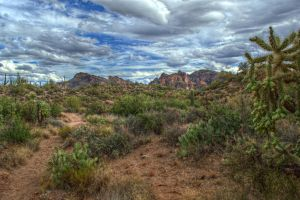 Superstition Wilderness by sapoguapo