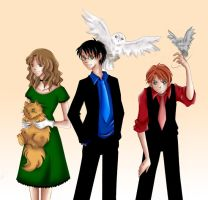 Harry Potter Trio by vari