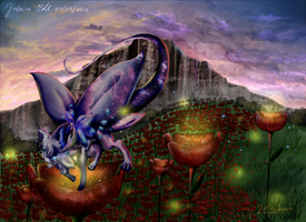 |Dta| The field of poppies by Miaein