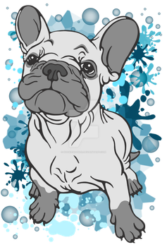 French Bull Terrier Blue Splodge by sookiesooker