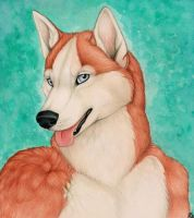 Red Husky by Korrok
