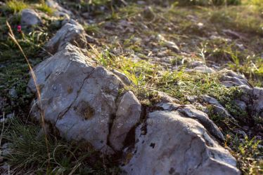 Detail of stones by Primorf