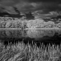 SUBART-LANDSCHAFT-INFRARED-003 by subart59