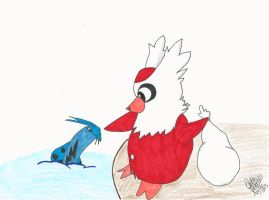 Delibird and Barboach