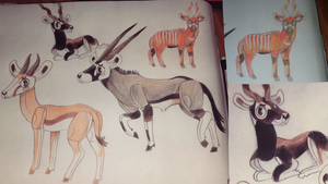 my favorite types of antelope. by lizzardblackrose