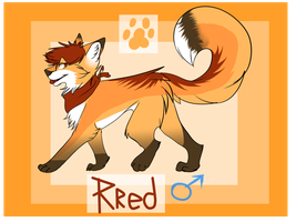 Rred Canine Reference by PrintedDingo