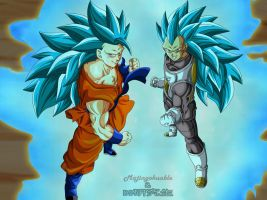 Goku y Vegeta SSGSS3 by Majingokuable