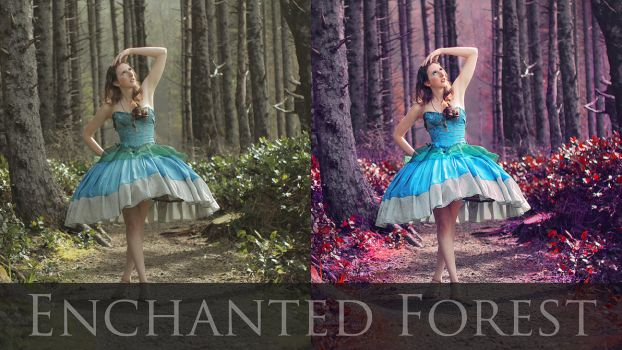 Enchanted Photo Retouch Tutorial (link below) by TEMPERATE-SAGE