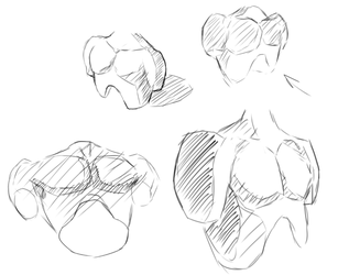 More Chest Practice by DigitalBunnyHops