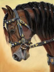 Horse portrait by sschukina