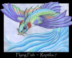 Flying Fish by AmberHallows