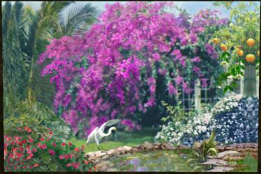 Egret and Bougainvillea by amylynne99