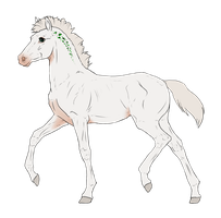 N2916 Padro Foal Design by casinuba