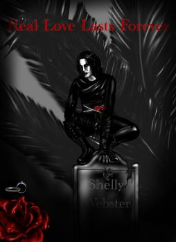 #shellywebster | Explore shellywebster on DeviantArt