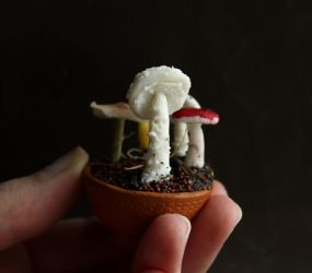 Day 4: Mushroom by fairchildart