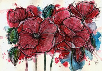 Poppies by koffinkandy