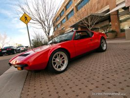 Pantera Red by Swanee3