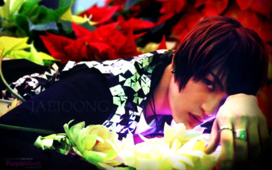 Kim Jaejoong Wallpaper by chibimisao