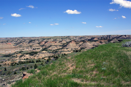 Theodore Roosevelt Park 2 by BeyondGlory