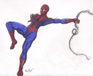 Spiderman by meb1982