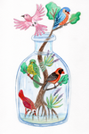 Birds in a Bottle Watercolor Painting by LoVeras
