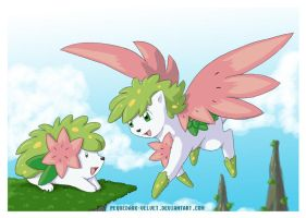 SHAYMIN WAITING FOR YOU