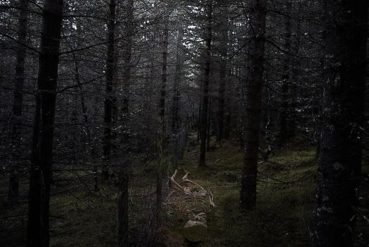 In the woods they will find your body by eatmyselfalive