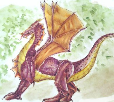 a dragon by myway8D