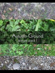 Autumn Grounds by Flohock