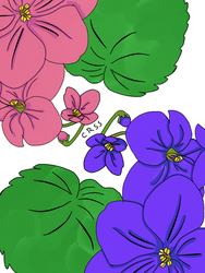 Violeta's violets by Blumencress