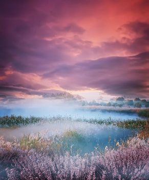 background stock379 by Sophie-Y