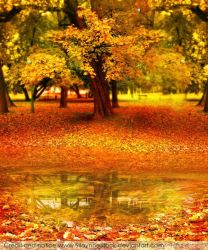 Sweet Autumn Stock I by SilaynneStock