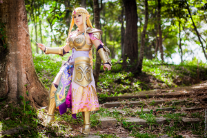Hyrule Warriors Zelda by LayzeMichelle