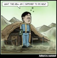 Fallout in a Nutshell by CitizenWolfie