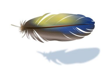 Realistic Vector Feather by lazunov