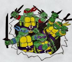 Ninja Turtles by Taylor2984