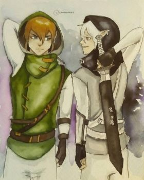 Link and DarkLink  by canonkay