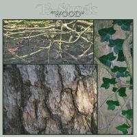 Wood Pack 1 by E-Stock