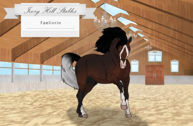 Faelivrin IHS by IvoryHillStables