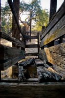 Old Cattle Ramp by jpnunezdesigns
