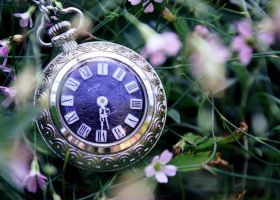 the time stands still by vularia