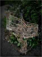 old shopping cart. by steeerne