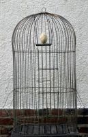 Cage by swelements