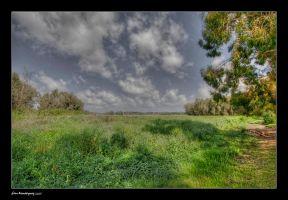 Park Hasharon by gilonm