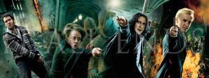 Harry Potter 7.2 Banner by NERD485