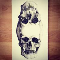 Double Skull 2 by LordColinOneal